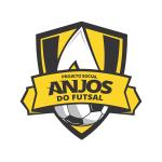 Anjos do Futsal